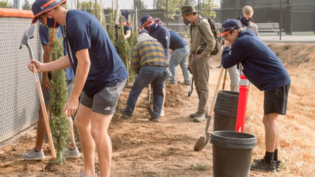 Members of the FPU baseball team planting trees near the diamond