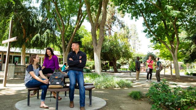 Several students spend a sunny day outdoors in Alumni Plaza (the Forest) on the main FPU campus