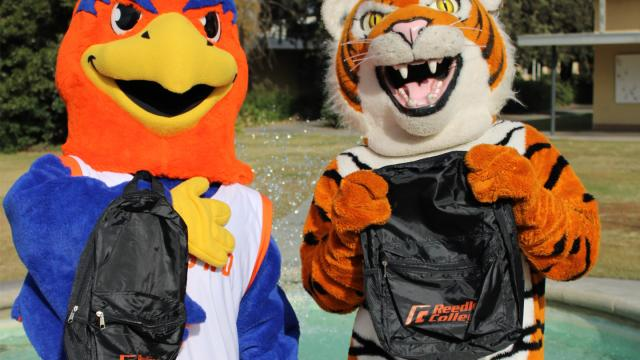 Sunny the Sunbird and the Reedley Tiger compare gear in a meeting of school mascots.